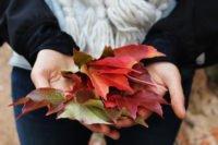 motivational-speaker-colette-carlson-newsletter-says-how-to-employ-gratitude